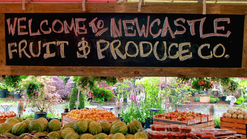 Newcastle Fruit & Produce Co.