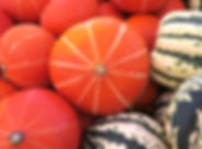 Squash_AmberCup_IMG_3027.jpg