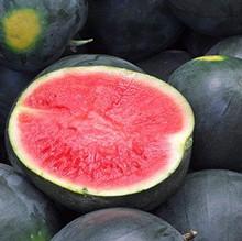 Sweet Black Seedless Watermelon