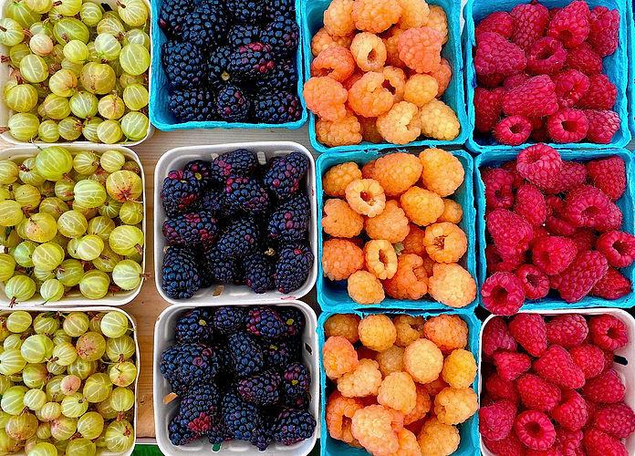 Berries_LocalSummerBerries_Mixed_IMG_9601.jpg