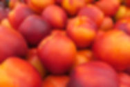 Nectarines_IMG_2525.JPG