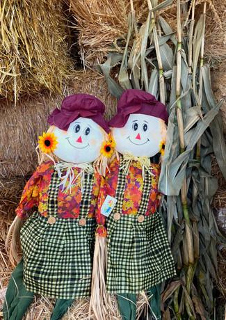 Halloween_Scarecrows_IMG_2583.jpg