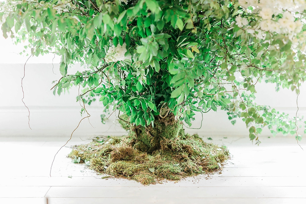 A tree created indoors from moss, foliage and roses