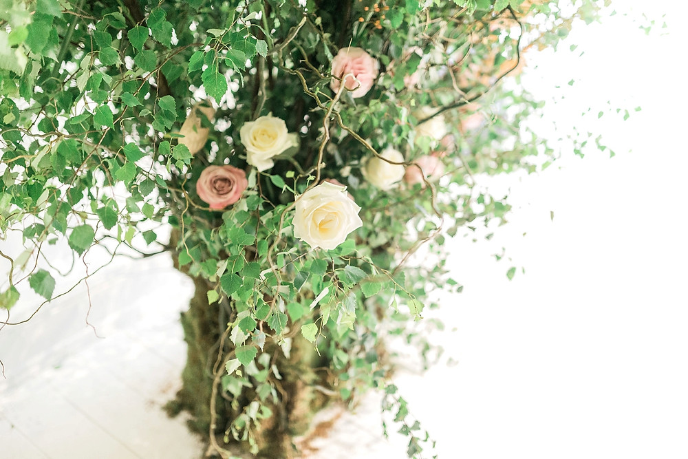 Example of large installation of flowers for a marquee wedding: A tree created indoors with climbing roses