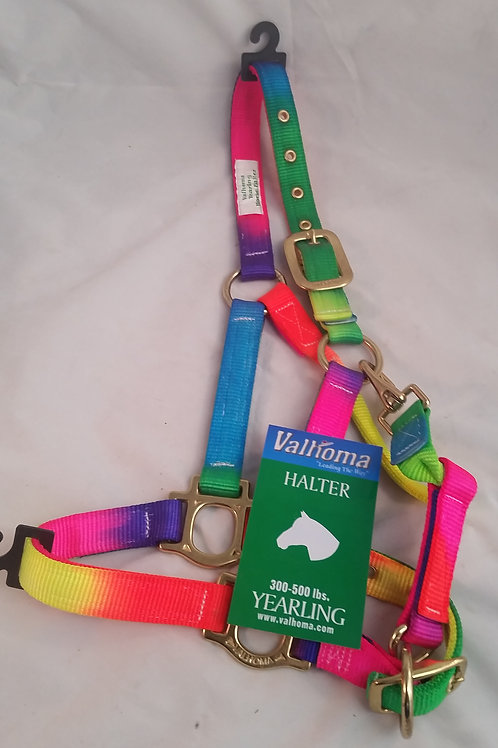 Valhoma Yearling Rainbow Halter