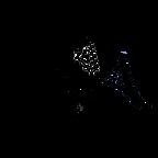 NSA Black Logo.png