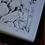 Thumbnail: Framed and Remarked Weeping Kookaburra Print