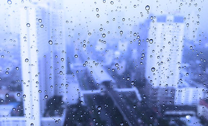 Droplets of water on a window