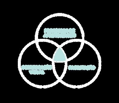 circulos_abordagem-01.png