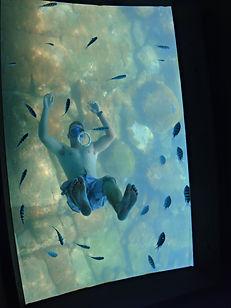 barquario-fundo-de-vidro3