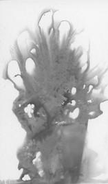 Chemigram - Tree