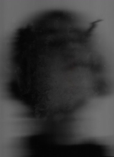 Portrait 8