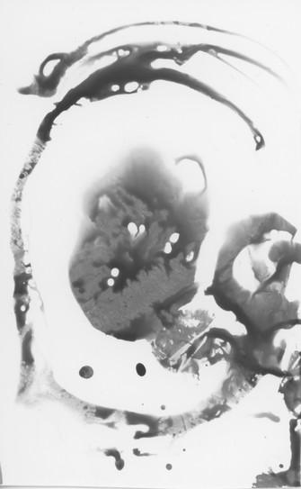 Chemigram - Circle of Life
