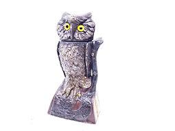Owl turns head bank2.jpg