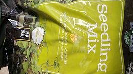 Seedling Mix.jpg