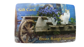 Gift Card Pic.png