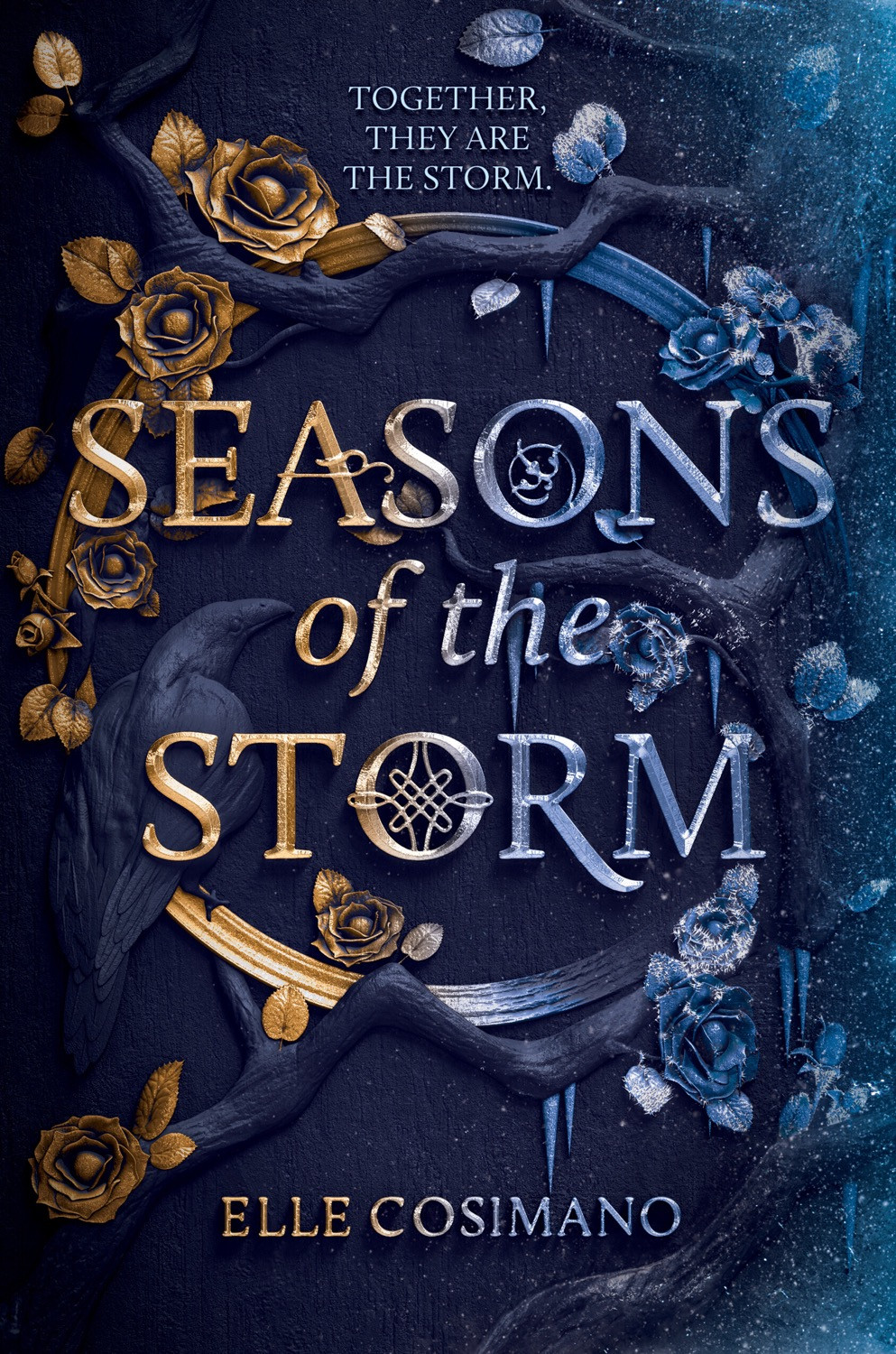 Book Cover: Seasons of the Storm by Elle Cosimano