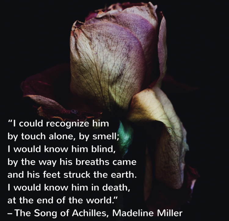 """I could recognize him by touch alone, by smell; I would know him blind, by the way his breaths came and his feet struck the earth. I would know him in death, at the end of the world."" – The Song of Achilles, Madeline Miller (Page 134)"