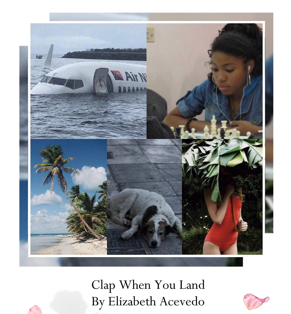 Book Aesthetic: Clap When You Land by Elizabeth Acevedo
