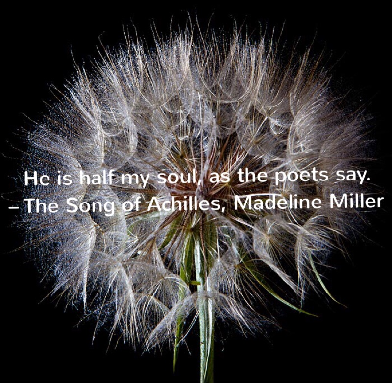 """He is half my soul, as the poets say."" – The Song of Achilles, Madeline Miller (Page 299)"