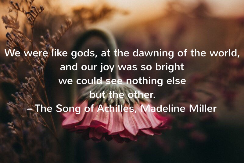 We were like gods, at the dawning of the world, and our joy was so bright we could see nothing else but the other. – The Song of Achilles, Madeline Miller (Page 103)