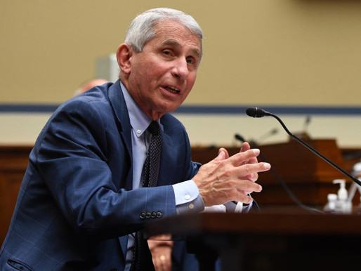 Dems get punched as Fauci says Trump's coronavirus policy decisions helped save lives
