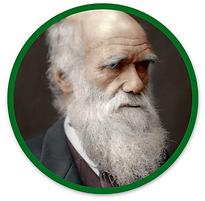 Darwin Circle.png