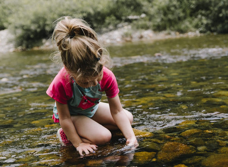 What Children can teach us about looking after the environment