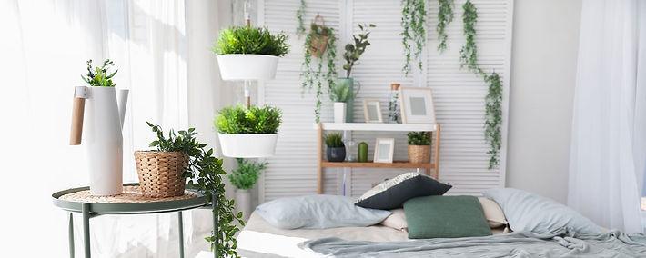 hnaging-plants-hero_edited.jpg