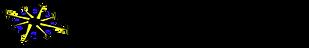 FTS Intl LLC Horizontal Logo.png