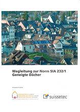 SIA Wegleitung 232-1.jpg