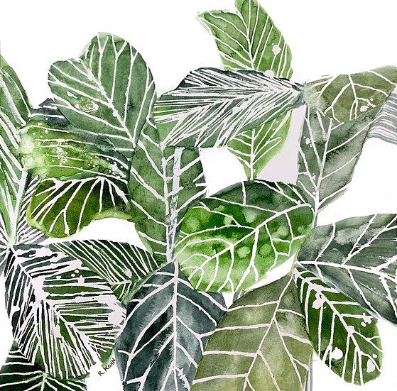 Plant Life III