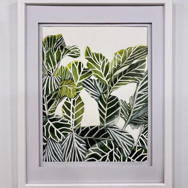 Plant Life #6