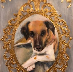 Roxie, Rescue Dog