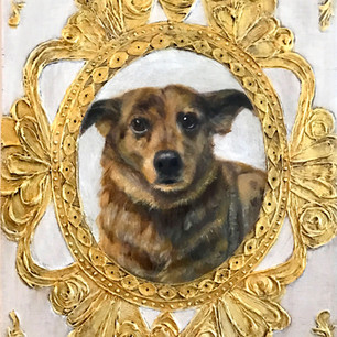 Walter, Rescue dog