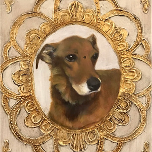 Maggie, Rescue dog