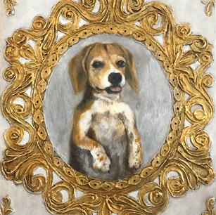Mabel, Beagle