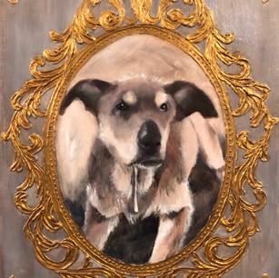 Ellie, Rescue Dog