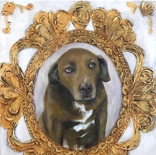 Brownie, Rescue dog