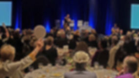 AIBF_Gala_Auction13_preview.jpg