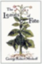 lof_cover_image_rgb.jpeg