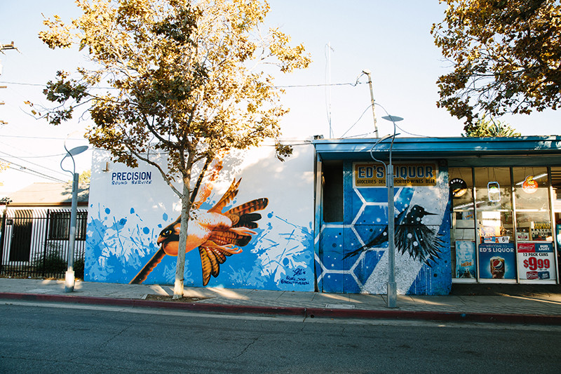 Marcel Blanco, Beautify Earth, Bird Mural, Pico Blvd Santa Monica, Pico Improvement Association