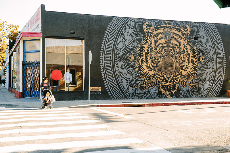 Chris Saunders, Beautify Earth, Tiger Mural, Pico Blvd Santa Monica, Pico Improvement Association, Karate Dojo