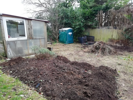 January in the community garden