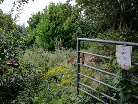 Landrew Road Community Garden