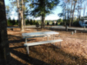 Site Picnic Table