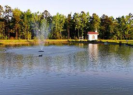 Masons Pond