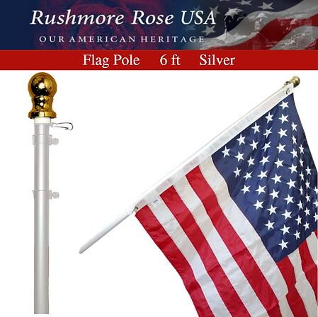Flag PoleSilverv2.PNG