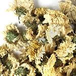 chrysanthemum-flowers-whole.jpg
