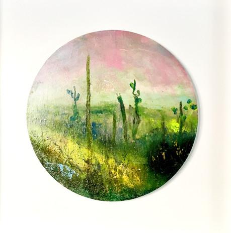 Desert Morning  £300 Acrylic and Oil on circular board, framed in white tray frame  H 40 cm - W 30 cm